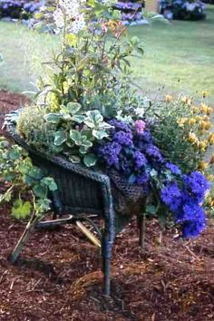 wicker chair planter (glad I didn't burn my old wracked wicker chair!)