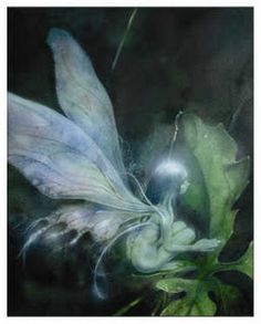 Fairy by Brian Froud