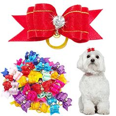 Didog 50 Pcs Mixed Color Rhinestone Bling Pet Cat Dog Hair Rubber Band Bows Grooming Accessories >>> Be sure to check out this helpful article. Dog Hair Bows, Dog Bows, Puppy Grooming, Pet Puppy, Dog Smells, Groom Accessories, Cat Dog, Pet Paws, Dog Teeth
