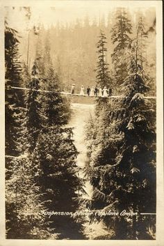 This tree top walk in British Columbia must have been a skirt raising experience