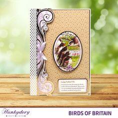 Birds of Britain - Hunkydory | Hunkydory Crafts