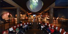A Night at the Museum Sleepover.. You probably won't catch some zzzs but will definitely have a good time exploring the American Museum of Natural History