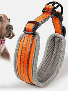 I found this amazing Lycra Cloth Double Neck Pet Adjustable Collar Dog Necklace 3M Fluorescent with US$8.63,and 14 days return or refund guarantee protect to us. --Newchic Cheap Dog Clothes, Clothes For Sale, Funny Talking Dog Videos, Dog Quotes Love, Dog Jokes, Cute Funny Dogs, Dog Necklace, Make Money Now