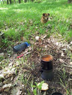 Sbalit nádobí plus ingredience, uvařit si oběd někde v lese a současně při tom vyvenčit psa? Tohle je taky malé dobrodružství! Dog Food Recipes, Pets, Dog Recipes, Animals And Pets