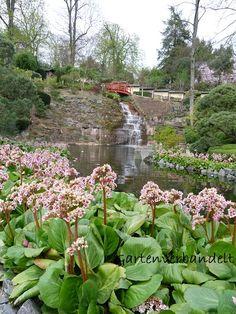 Beautiful Im Gartenblog gibt es Einblicke in den eigenen naturnahen wildromatischen Garten mit nat rlicher Deko und