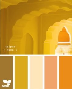 """""""jaipur hues"""" - this palette is from design-seeds.com & would look great with antique furniture & rich dark, or medium/warm woods."""