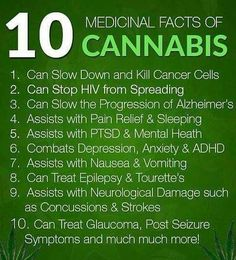 Still depending on pills, read out these amazing facts of cannabis #marijuana #medicalmarijuana  http://budposters.com/