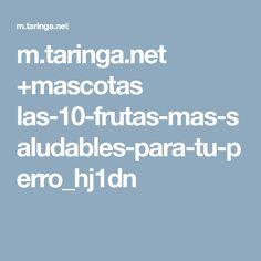 m.taringa.net +mascotas las-10-frutas-mas-saludables-para-tu-perro_hj1dn Stitch, Interview, Pets, Dogs, Recipes, Full Stop, Stitches, Stitching, Sew