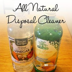 Chemical Free / All natural garbage disposal cleaning cubes. 3 ingredients, Easy & Cheap!