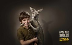 Zoo Bratislava: Kangaroo | Ads of the World™