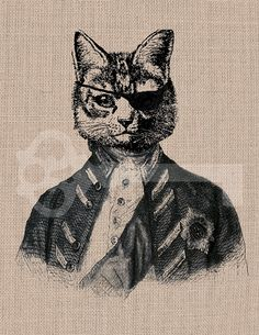 Instant Download cat pirate Digital Graphic: No.553, image transfer to burlap, linen, fashion, decor, printable artwork
