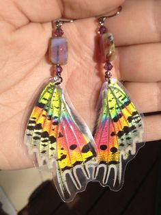 Sets of butterfly wing earrings (laminated) usually sell for about $20 a set. Another income source for when I start up a butterfly garden
