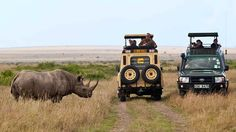 Masai Mara National Reserve in Kenya, Africa