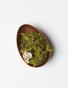 Easter egg terrarium - The House That Lars Built