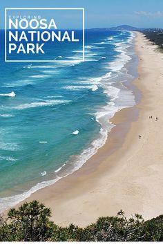 307 best sunshine coast australia images sunshine coast coast rh pinterest com