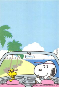 Snoopy and Woodstock Snoopy Cafe, Camp Snoopy, Snoopy And Woodstock, Snoopy Images, Snoopy Pictures, Peanuts Cartoon, Peanuts Snoopy, Snoopy Wallpaper, Cartoon Wallpaper