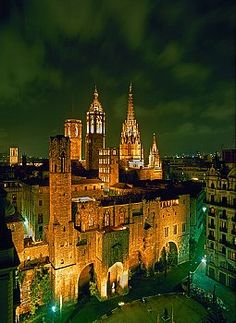 Barcelona Cathedral at Night, Catalonia