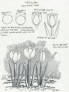 drawing beginner lessons beginners tutorials sketching tutorial easy drawings basic