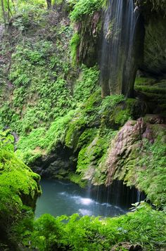 Westcave Waterfall and Pool. Waterfall and pool at Westcave Preserve, Texas , Hiking In Texas, Texas Travel, Travel Usa, Austin Hiking, Hiking Places, Places To Travel, Texas Vacations, Weekend Vacations, Family Vacations
