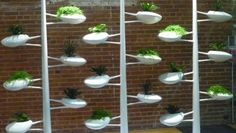 Designer Danielle Trofe's ingenious gardening system geared towards small indoor environments makes its international debut at WantedDesign.