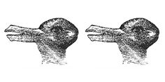 'Duck or rabbit' optical illusion shows why we fall for fake news Simple Optical Illusions, Duck Or Rabbit, Buzzfeed Articles, Science Topics, Something About You, Distinguish Between, What Do You See, Neuroscience, Physical Exercise
