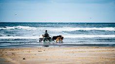 #lifesabeach #beach #horsecarriage #horses #terschelling #vscofilm #vsco #vscogrid #beachlovers #igersholland #contemporaryphotography #vscoexpo #sea #instadaily #documentaryphotography #beachlife #contemporaryart #contemporary #nature #vscoedit #vscodaily #Loves_Netherlands #nothingisordinary_ #dutch_connextion #igfriends_valledaosta #wanderlust #vscocam #monolith_europe