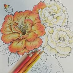 Shading large flowers. Colorist is amazing. - Pikore