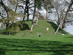 Heritage trees of Wales | picture of a grassy hilltop full of trees