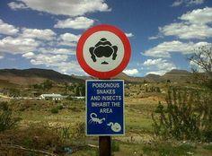 Animais na África do sul