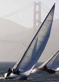ZZB Sailing by the Golden Gate Bridge