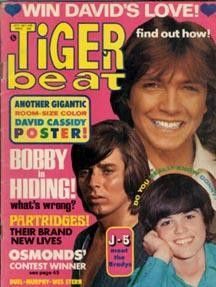 OMG David Cassidy, Bobby Sherman and Donny Osmond on the same magazine cover…