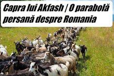 Capra lui Akfash este o parabolă persană, în care un învățat își dresează capra să dea din cap, în mod afirmativ, ori de câte ori este între...