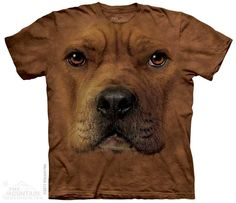 The Mountain - Pit Bull Face T-Shirt, $20.00 (http://shop.themountain.me/pit-bull-face-t-shirt/)