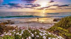 Surfer on a california beach at sunset wallpapers HD.