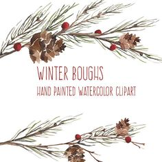 Winter Bough - Watercolor Flowers - Hand Painted Clip Art