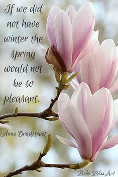 If we did not have winter the spring would not be so pleasant.