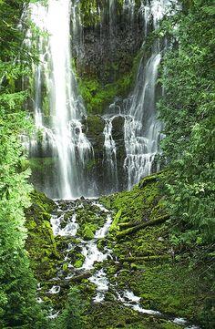 Willamette Valley, Oregon pool - the beautiful Northwest.