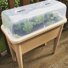 Fed up with buying herbs and them wilting before I use them. Hoping this will help solve the problem.  #herbplanter #herbgarden #herbs #basil #coriander #thyme #bay #mint #chilli #parsley #rocket #garden #gardening #mygarden #longacres
