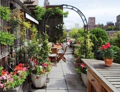 Having a rooftop that can be utilized as garden is a blessing. Rooftop garden design varies widely depending on available space as well as your building Rooftop Terrace, Terrace Garden, Rooftop Gardens, Garden Web, City Gardens, Balcony Gardening, Rooftop Restaurant, Urban Balcony, Jardin Decor