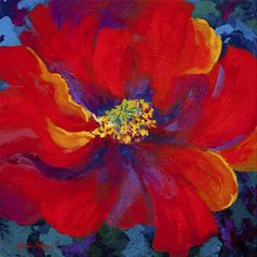 Passion - Red Poppy Painting  - Passion - Red Poppy Fine Art Print