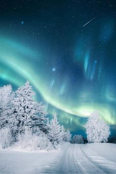 Aurora over snow. - - Terence - Aurora over snow. - Aurora over snow. Winter Szenen, Winter Magic, Winter Night, Winter Travel, Winter Europe, Snow Travel, Winter Photography, Landscape Photography, Nature Photography