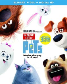 The Secret Life of Pets, which is out on December 6, 2016, makes a great gift idea this holiday gift giving season! Check it out! #ad