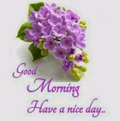 Good Morning Beautiful Gif, Good Morning Flowers, Good Morning Images, Good Morning Greetings, Good Morning Wishes, Good Morning Quotes, Night Quotes, Image Center, Moon Pictures