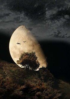 """""""We are all like the bright moon, we still have our darker side.""""  ― Khalil Gibran..For me this means No evil side!"""