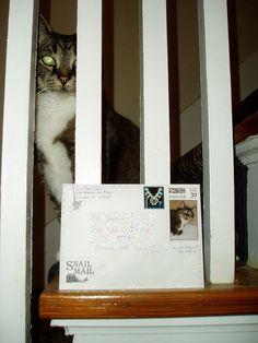 Magic guards a letter