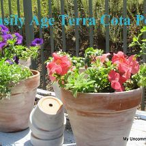 How to easily age terra cotta pots
