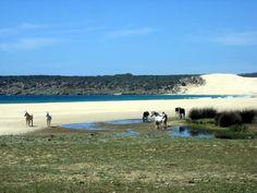 Playa de Bolonia. Tarifa. Cádiz. Spain
