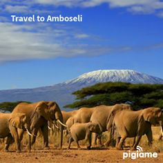 Looking for a weekend plan? Head to our site to make a booking. #traveller #tembekenya