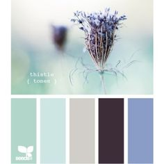 Blurb ebook: Design Seeds ❤ liked on Polyvore featuring design seeds, backgrounds, colors, color palettes and purple