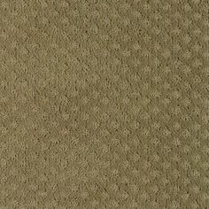 Classic Details style carpet in Peat Moss color, available wide, constructed with Mohawk Wear-Dated DuraSoft® carpet fiber. Mohawk Carpet, Mohawk Flooring, Peat Moss, Bedroom Flooring, Modern Carpet, Carpet Runner, Shag Rug, Classic, Princess Polly